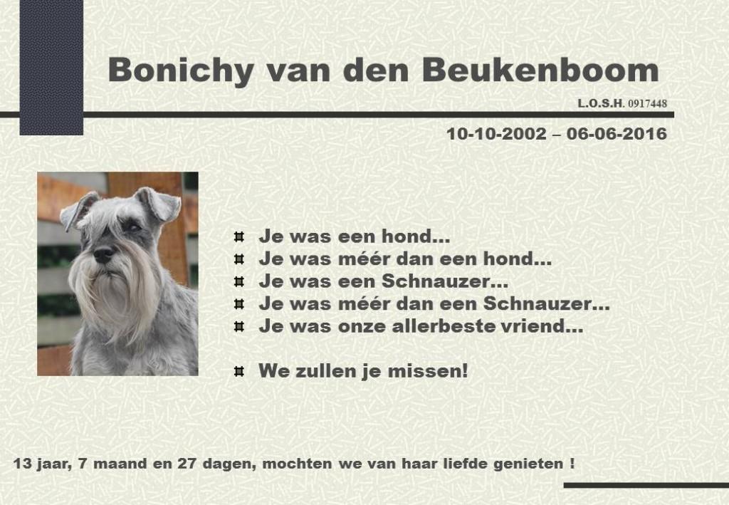 Bonichy van den Beukenboom Nl