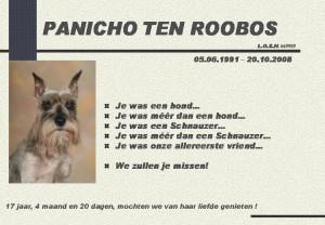 PANICHO TEN ROOBOS.