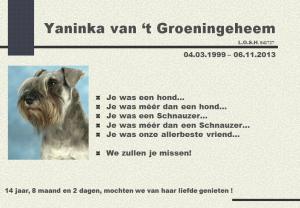 Yaninka nl